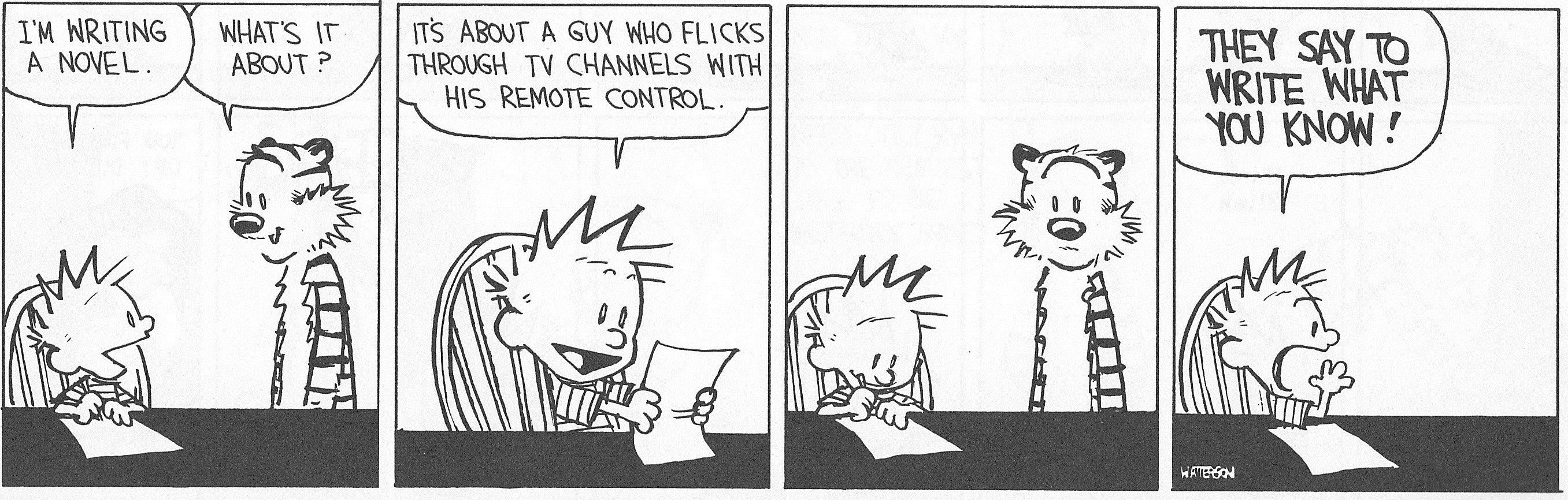 Image result for calvin and hobbes writing novel