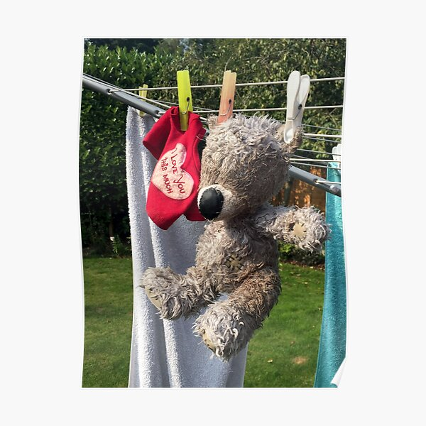 Washing Bear Posters | Redbubble