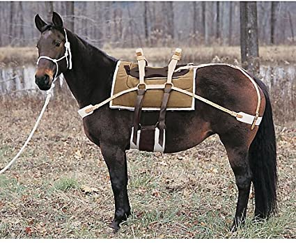 Amazon.com : Weaver Double Rigged Sawbuck Pack Saddle : Sports ...