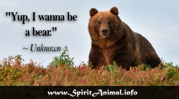 Image result for bear quotes