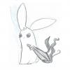 Szeth bunny