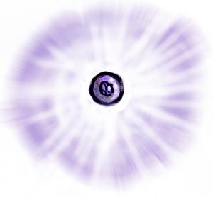 Combat_Illumination_FlashGrenade.jpg.9205c9de3e71479011529a960c4398de.jpg