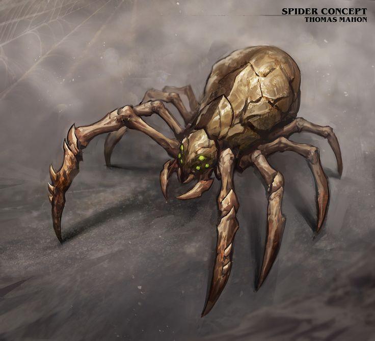 Spider 7.jpg
