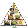 The TRUE food pyramid.