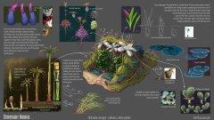 Natural History of Roshar