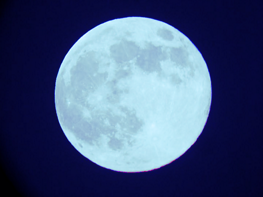 Moonglow-finished.png.560d75b43cd336e1c2581e56564ff341.png