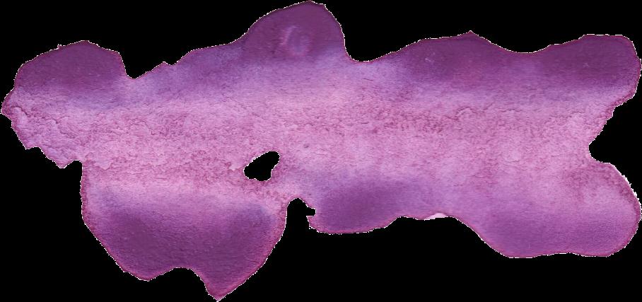 pngfind.com-purple-watercolor-png-2673552.png.94e1e16f39c4dc5cc4368b2794bda65e.png