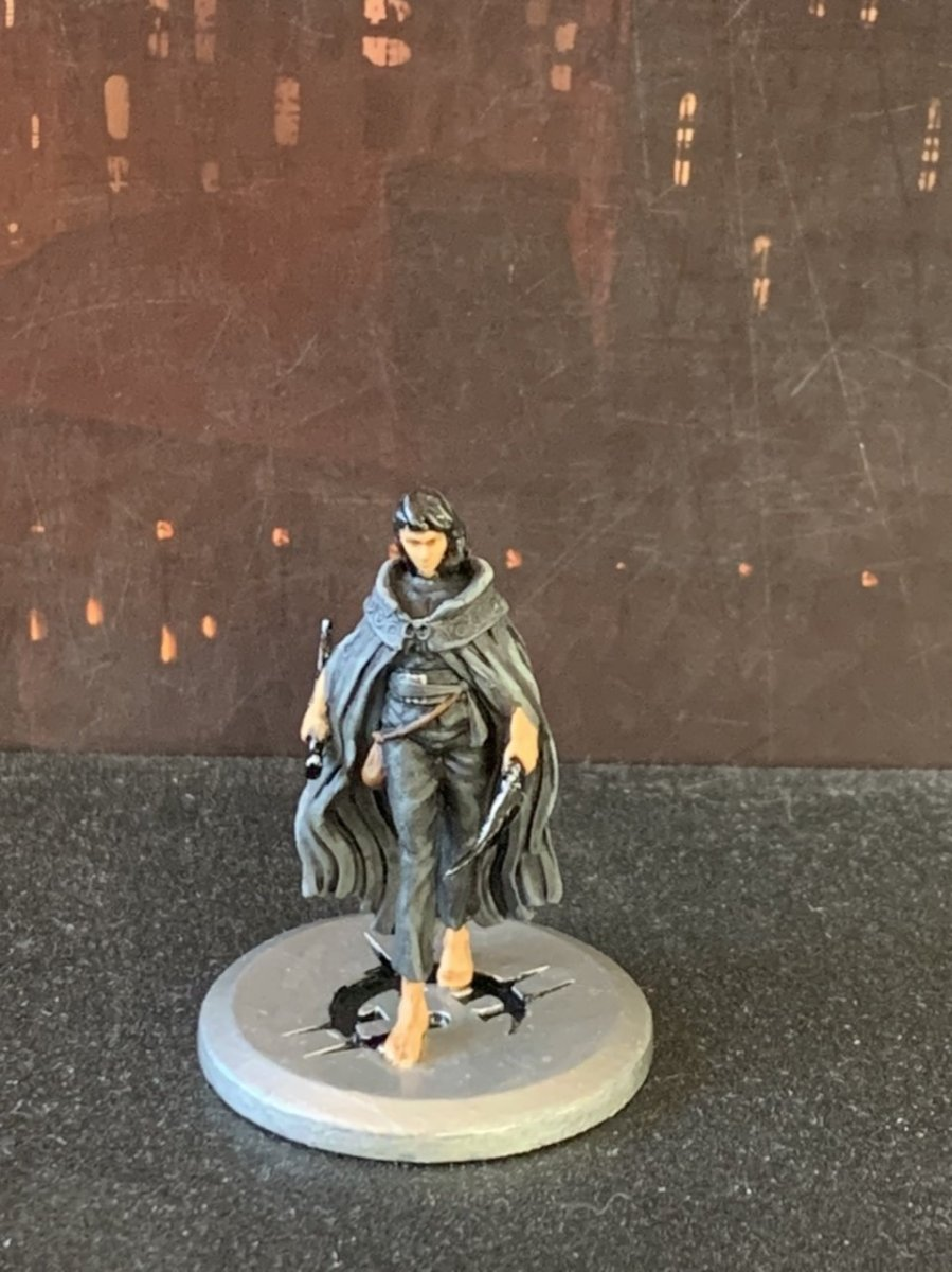 Mistborn House War Painted Vin