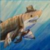 Tony Shark